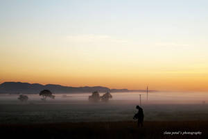 Foggy sunrise by Zlata-Petal