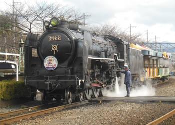 Tsubame x Steam-go at Umekoji SL Museum by rlkitterman