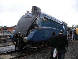 LNER 4468 Mallard at Railfest 2012 by rlkitterman