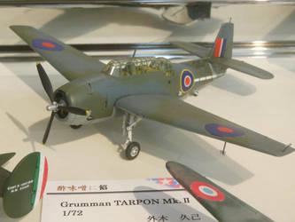 1/72 RN Grumman Tarpon Mk.II at SHSq by rlkitterman