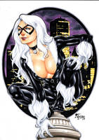 Blackcat by Fredbenes
