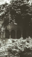 Old Jewish Cemetery in Wroclaw (Poland) by OkeMani