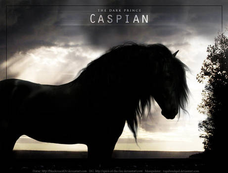 Caspian by dream-seer