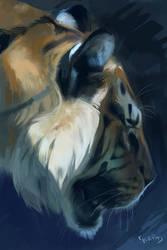 45min. Tiger by kepkepkep