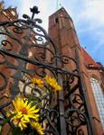 Church (Wroclaw, Poland) by spm62