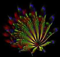 peacock wheel... by FeliFee