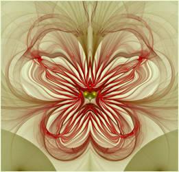 visionary heart... by FeliFee