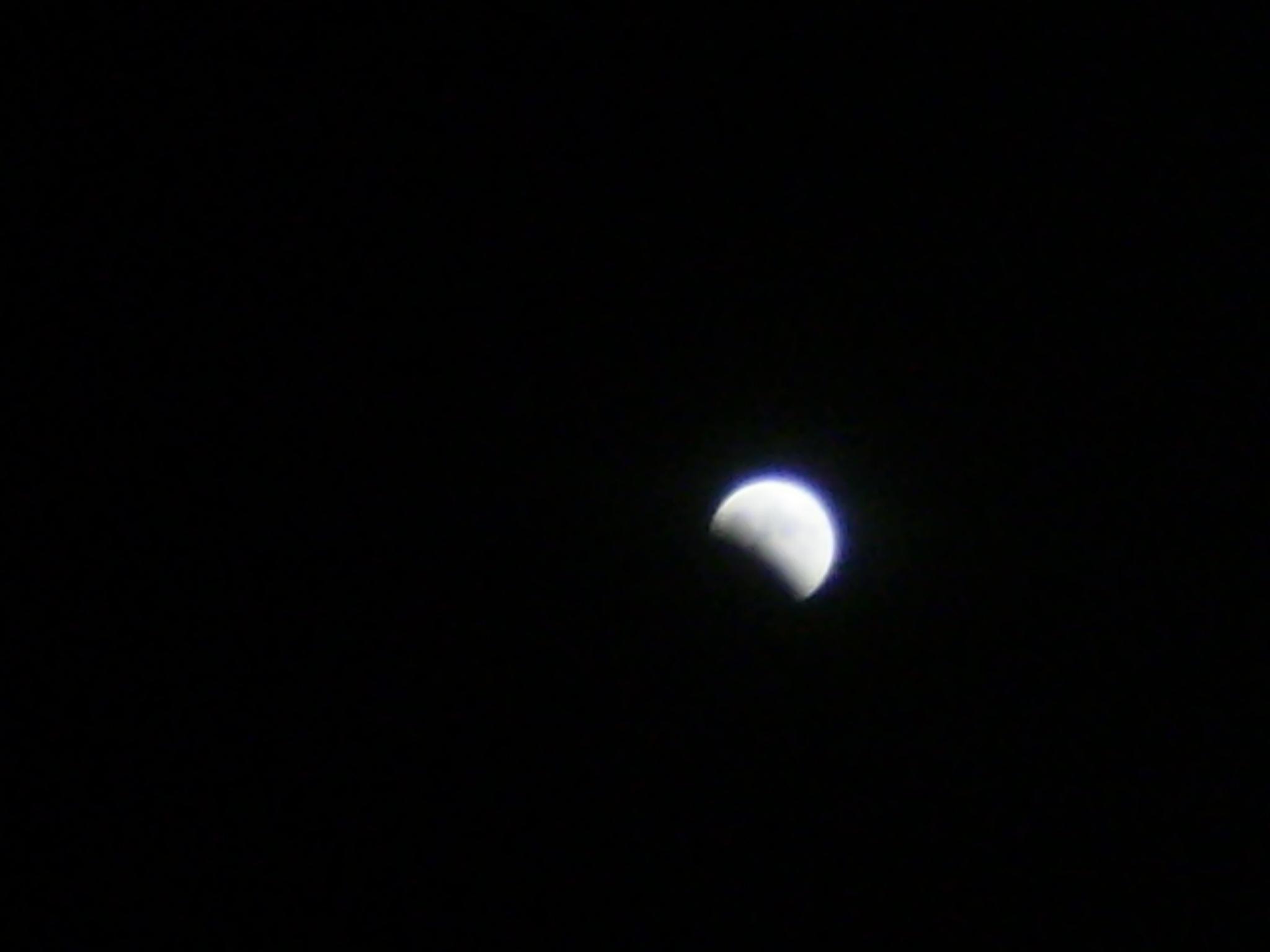 Night moon by ventrix24