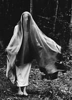 nightmare IV by bailey--elizabeth