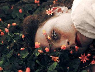 berceuse by bailey--elizabeth