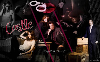 Castle and Beckett by joey-artworks