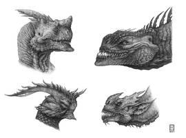 Dragon Head Study Pencil 2 by Deepcore1