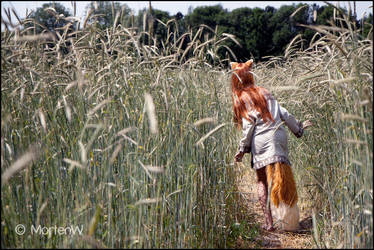 Spice and Wolf: In the Fields by MortenW