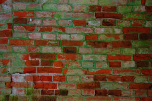 another brick in the wall by Nataskus