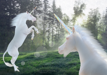 Life Restoration of Opal Unicorns by Everch