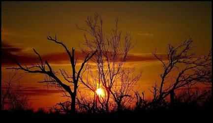 A Cajun Sunset by SalemCat