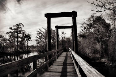 Across the Dismal Swamp by SalemCat