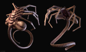 Facehugger by Izuael