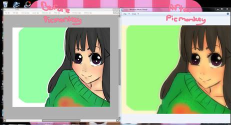 Picmonkey effects by digi775