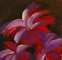 Red'N'Purple by Rozzi-dk