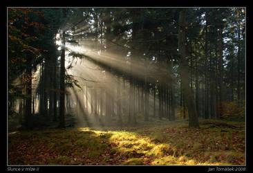 Light beams II by semik