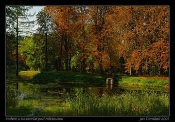 Autumn by semik