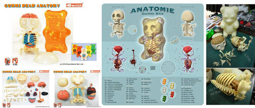 Gummi Anatomy 3D Puzzle Toy by freeny