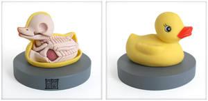 Rubber Ducky Anatomy Sculpt by freeny