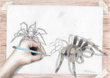 spider bite by Laminated-TeabaG