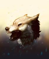 Evening Wolf Headshot by EmpiricEmissary