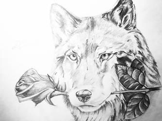 Wolfs love by BigStar6207