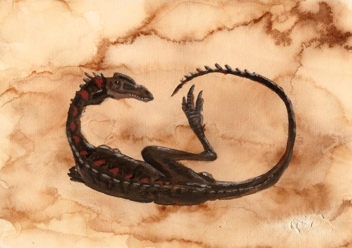 Elaphrosaurus bambergi by tuomaskoivurinne