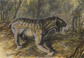 Smilodon populator by tuomaskoivurinne