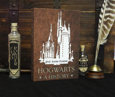 Hogwarts a History by Spoon333