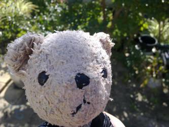 TeddyBear by extramaster