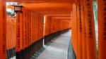 Fushimi Inari-taisha by Bakenekoya