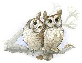 Owlies by maggock