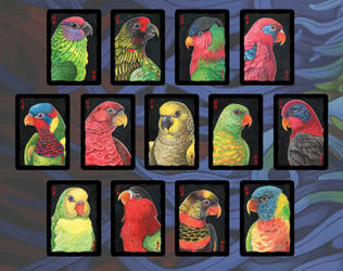 Parrots of the World: Lories and Lorikeets by maggock
