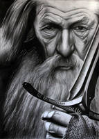 Ian McKellen Gandalf by donchild