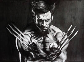 The Wolverine by donchild