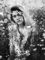 Wallflower by Queen-Kitty
