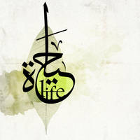 Hayaat - Life by endlessway