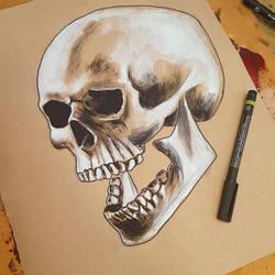 Gouache skull by Fenceclimber