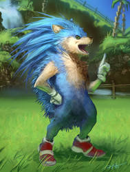 Sonic the Realhog by arvalis