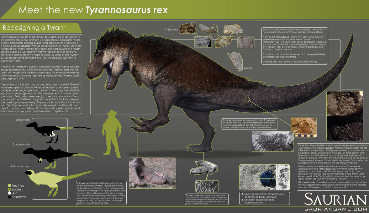 Saurian-T. rex Infographic by arvalis
