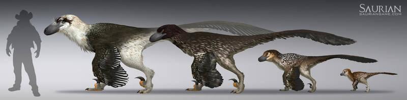 Dakotaraptor Growth Cycle by arvalis