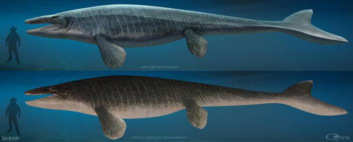Saurian-Mosasaurus by arvalis