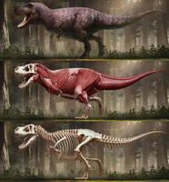 Tyrannosaurus rex-2018 by arvalis