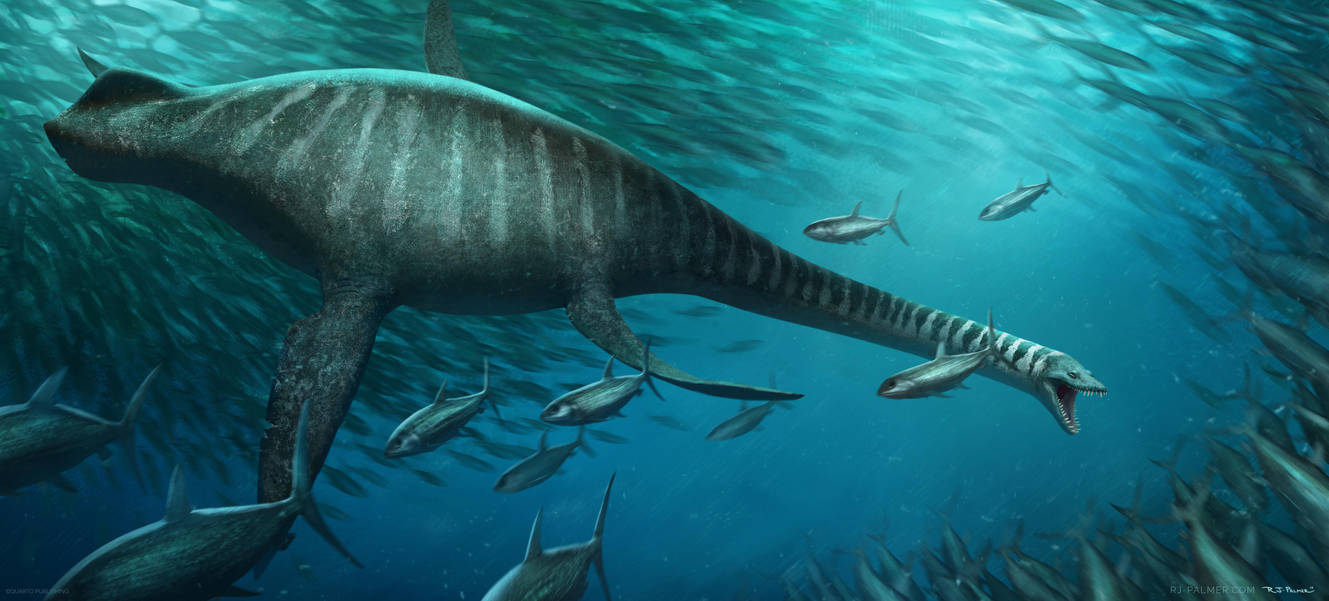 elasmosaurus by arvalis on deviantart