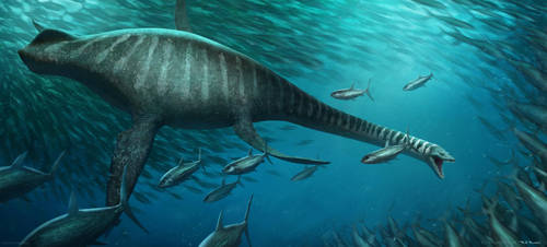 Elasmosaurus by arvalis